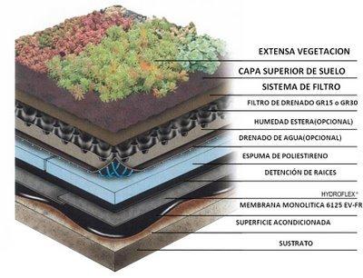 Techos Verdes Beneficios Sociales Ambientales Y